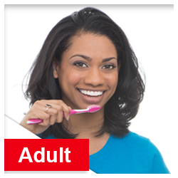 Adult Toothbrushes