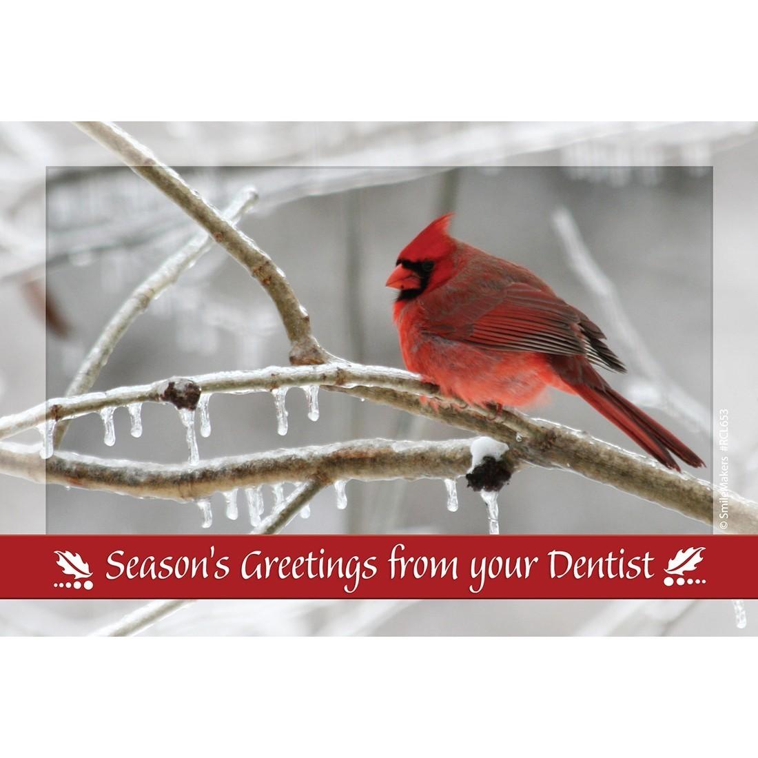 Dental Seasons Greetings Recall Cards [image]