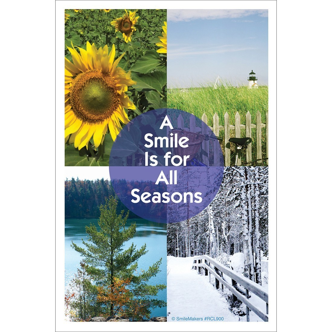 Smile for Seasons Recall Cards [image]