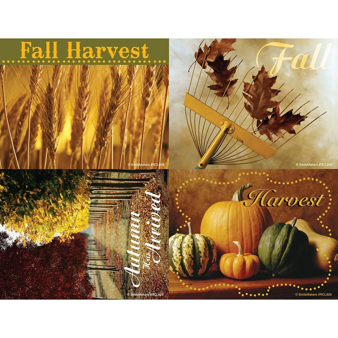 Autumn Laser Cards [image]