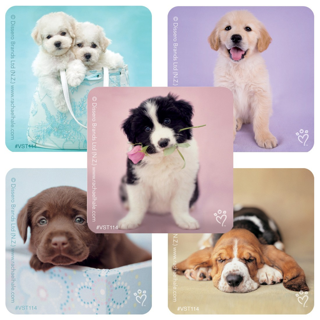 Rachael Hale Dogs ValueStickers  [image]