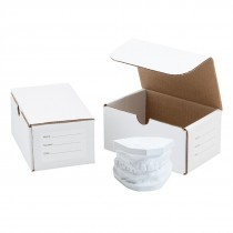 Dental Model Storage Boxes