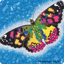 Butterflies Stickers