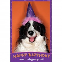 Birthday Dog Greeting Cards