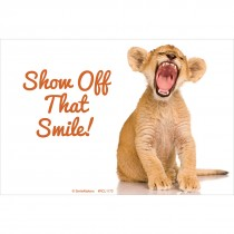 Baby Tiger Smile Recall Cards