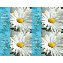 Daisy Dental Laser Cards