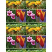 Wildflower Reminder Laser Cards