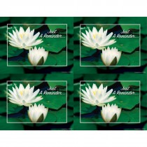 Water Lillies Laser Cards