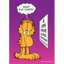 Garfield What Eye Chart? Laser Cards