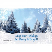 Merry & Bright Christmas Recall Cards