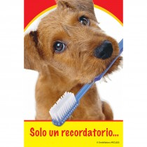 Spanish Dog with Toothbrush Recall Cards