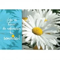 Spanish Daisy Dental Recall Cards