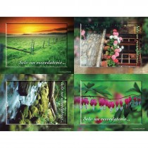 Spanish Nature Scenic Laser Cards