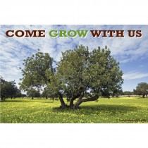Grow With Us Recall Cards