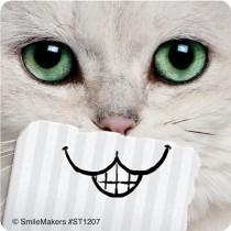 Cat Smiles Stickers