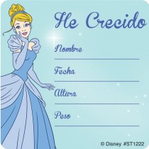 Disney Princess Spanish I've Grown Stickers