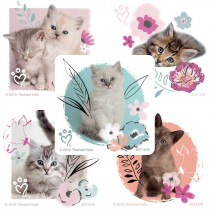 Rachael Hale Pretty Kitty Stickers