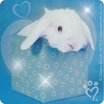 Glitter Rachael Hale® Stickers