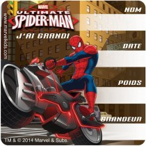 Spider-Man French I've Grown Stickers