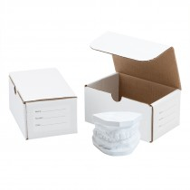 2-Dental Model Storage Boxes
