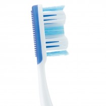 SmileCare Adult Premium 36 w/ Tongue Cleaner Toothbrushes