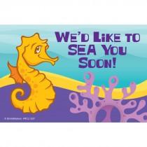 Sea Life Pals Sea Horse Recall Cards