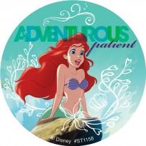 Disney Princess Friendship Patient Stickers