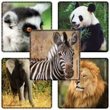 Favorite Animals Stickers