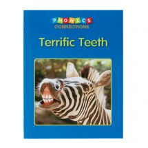 Terrific Teeth Book