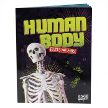Human Body Facts or Fibs Book