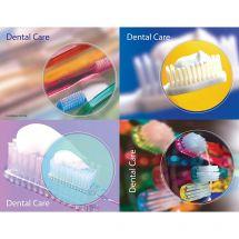 Dental Care Basics Laser Cards