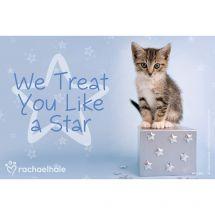 Rachael Hale Cat Treat You Like A Star Recall Cards