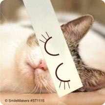 Cartoon Cat Eyes Stickers