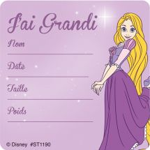 Disney Princess French I've Grown Stickers