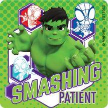 Spidey & His Amazing Friends Patient Stickers